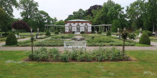 Rosengarten im Palmengarten