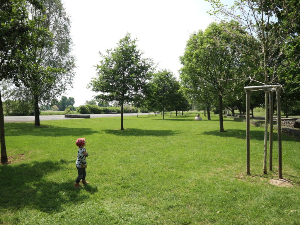 Tolle Grünflächen am Alten Flugplatz