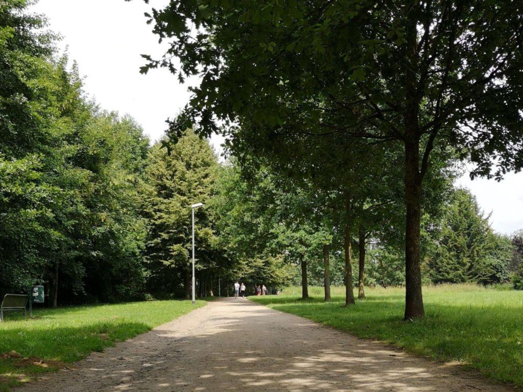 Der Naturerlebnispfad Sindlinger Wiesen in Kelkheim