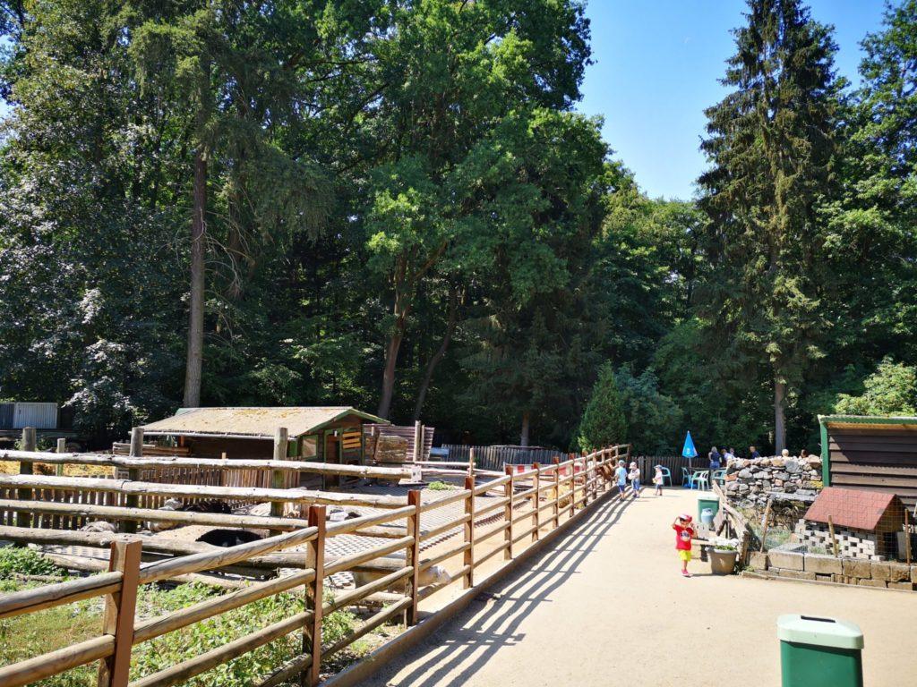 Süß und niedlich - der Waldzoo Offenbach ist für Kinder bis ca. 9 Jahre perfekt geeignet