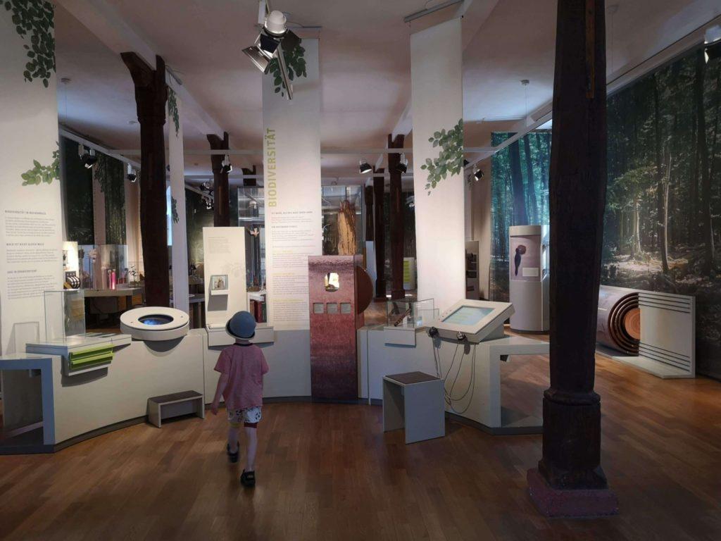 Tolle Ausstellung im bioversum Jagdschloss Kranichstein - Frankfurt mit Kids