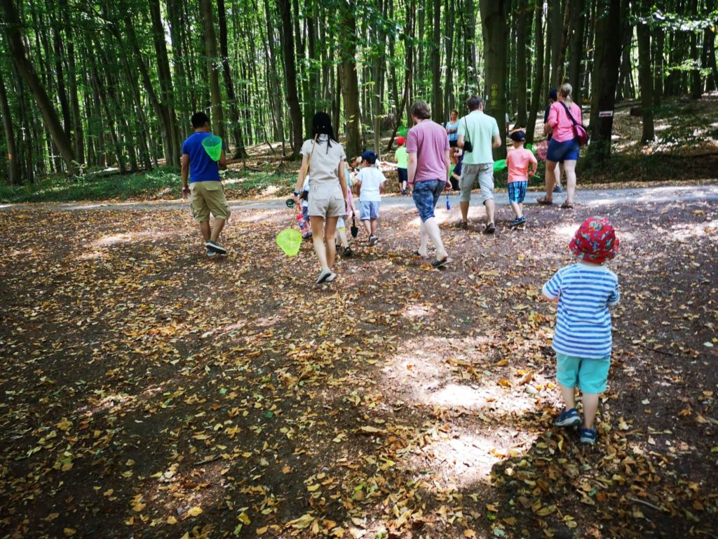 Auf in den Wald - Frankfurt mit Kids