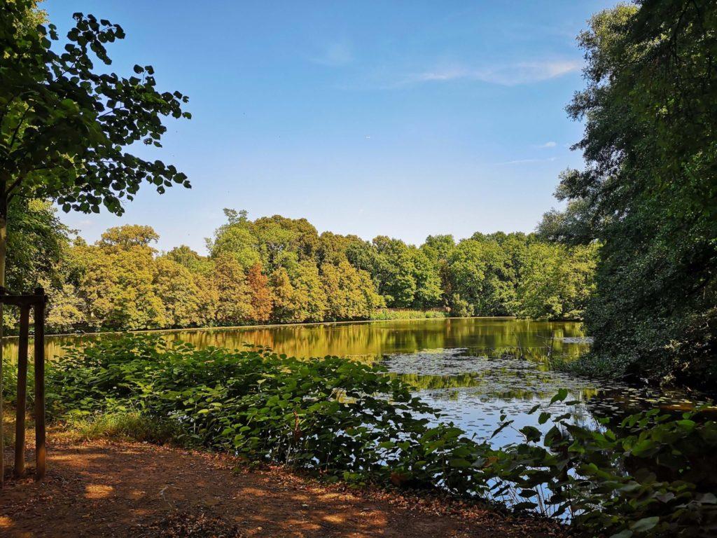 Der See am bioversum Jagdschloss Kranichstein - Frankfurt mit Kids