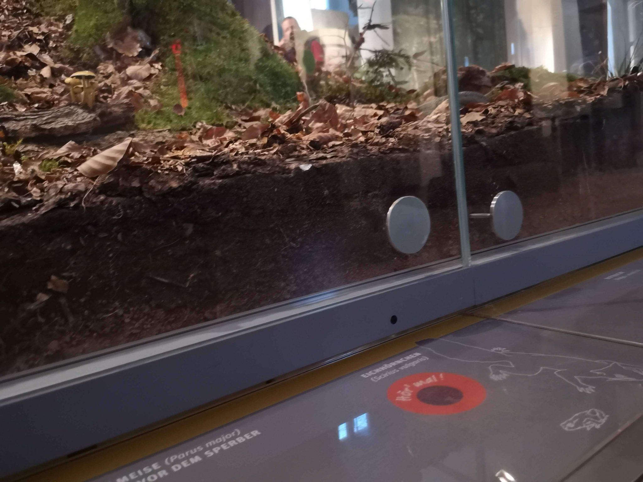 Die Ausstellung ist interaktiv und einfach zu bedienen für alle Kinder - Frankfurt mit Kids