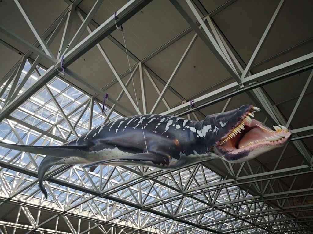 Die Evolution des Fluges Ausstellung am Flughafen Frankfurt - Frankfurt mit Kids