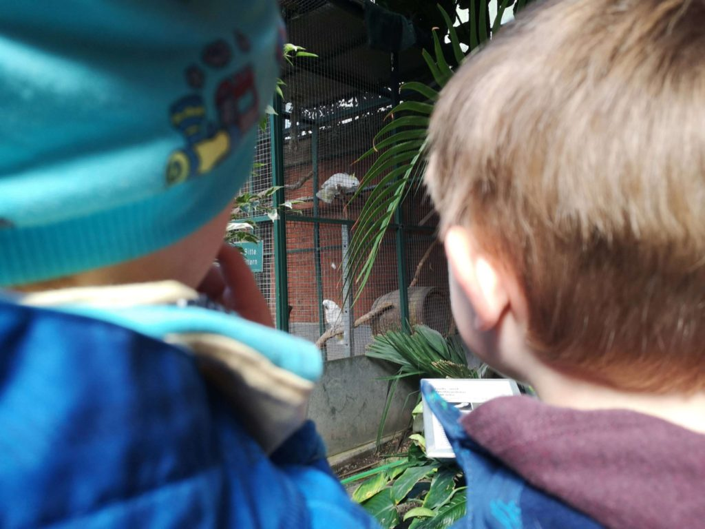 Die Kakadus schreien oder waren es die Kinder - Frankfurt mit Kids