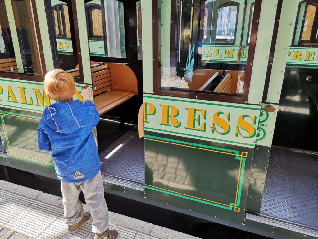 Türen auf Palmen-Express Palmengarten Frankfurt - Frankfurt mit Kids