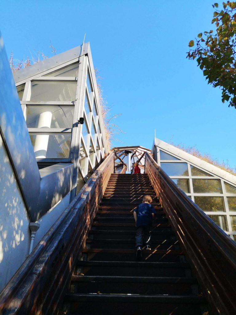 Und jetzt auf's Dach des StadtWaldHauses - Frankfurt mit Kids