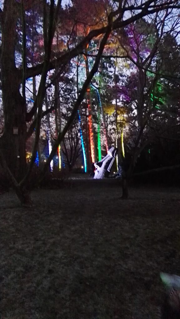 Winterlichter Palmengarten
