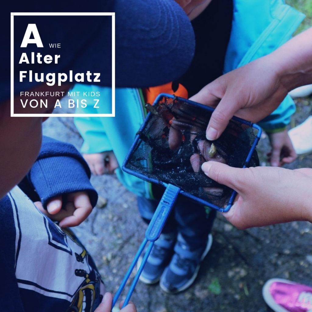 Alter Flugplatz - Frankfurt mit Kids von A bis Z