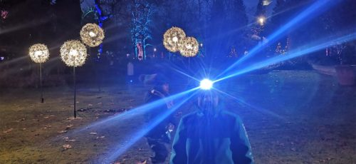 Lichterspielchen im Palmengarten