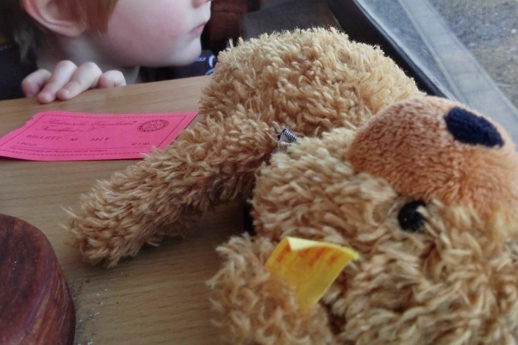 Der Teddybär durfte auch mit für eine Freifahrt im Dampflok-Express