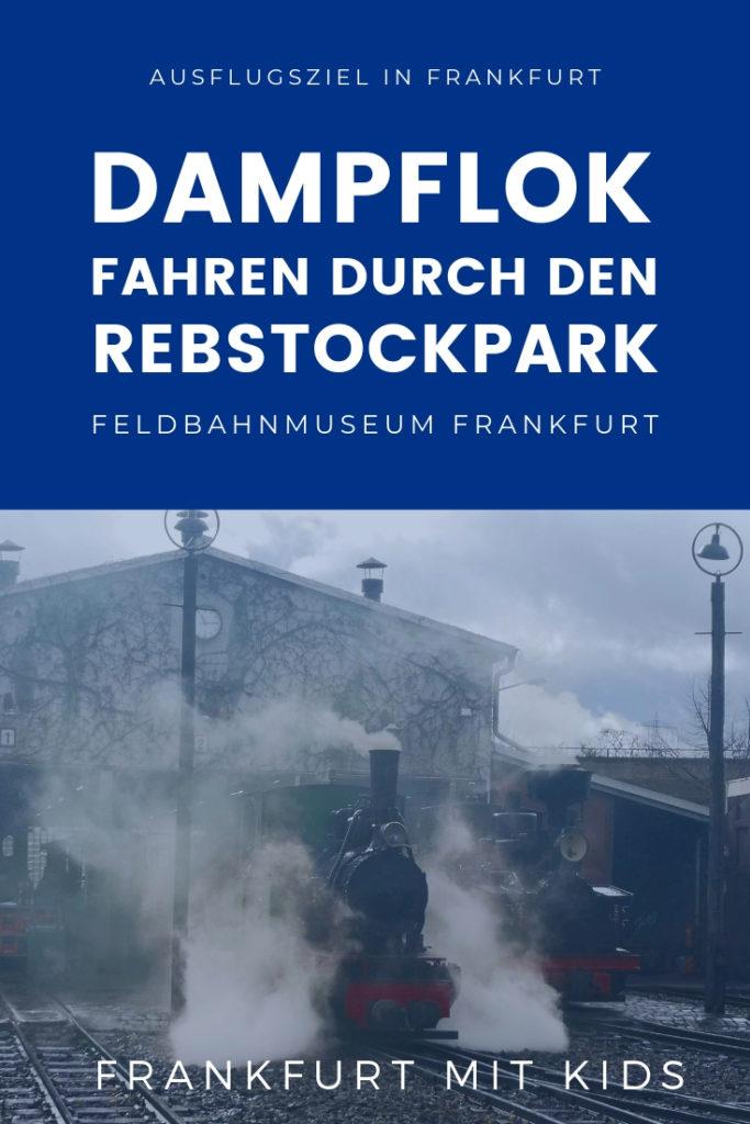 ausflugstipp-dampflock-rebstockbahn