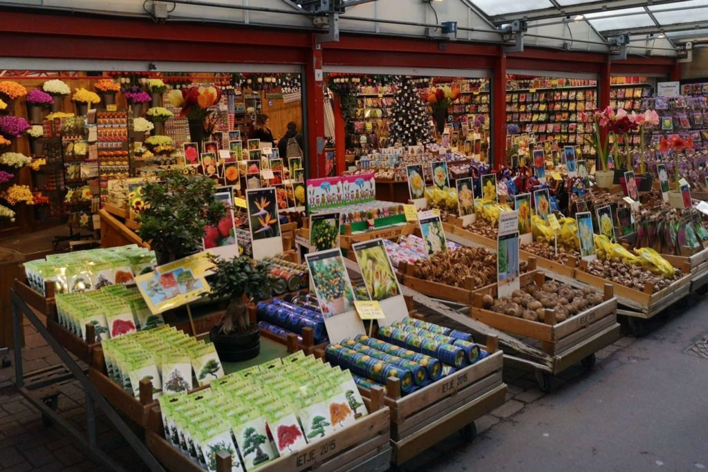 Touri-Highlight: Blumenmarkt