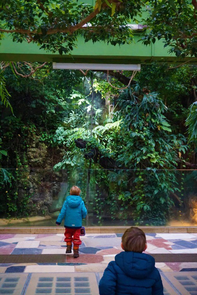 Das Exotarium ist für die Kinder ein großes Abenteuer