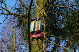 Ein buntes Vogelhäuschen im Goldsteinpark in Bad Nauheim