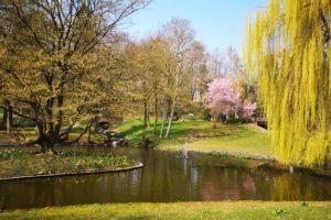 Kurpark in Bad Nauheim