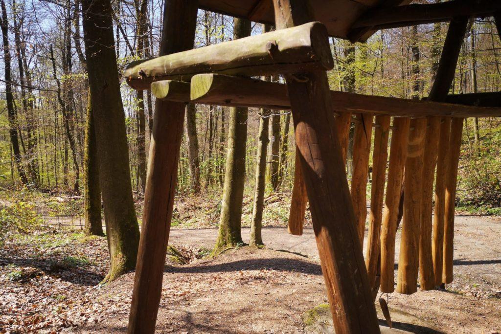 Die Klänge des Holzes auf dem Walderlebnispfad erleben