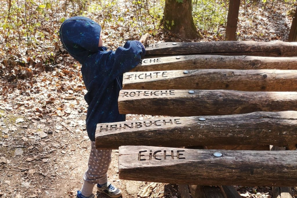 Xylophon spielen an einer Station des Walderlebnispfads in Wiesbaden macht nicht nur den Kleinen Spaß