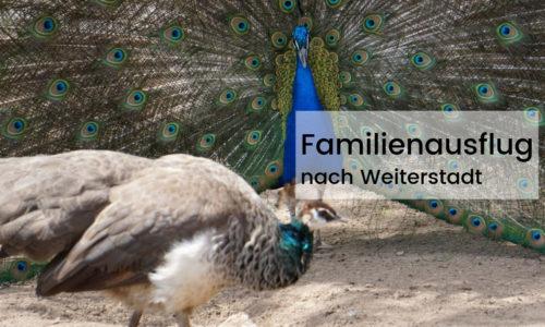 Familienausflug in Weiterstadt bei Darmstadt