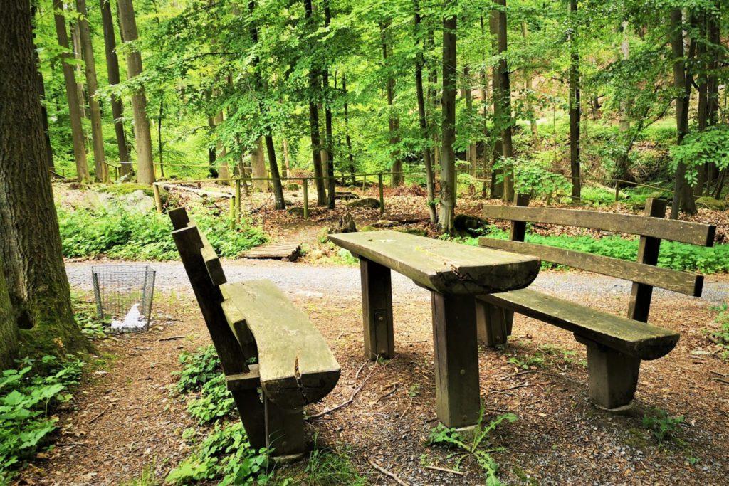 Picknick unter Bäumen