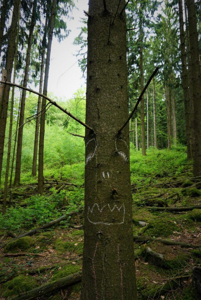 Der Baum wurde bemalt mit Kreide