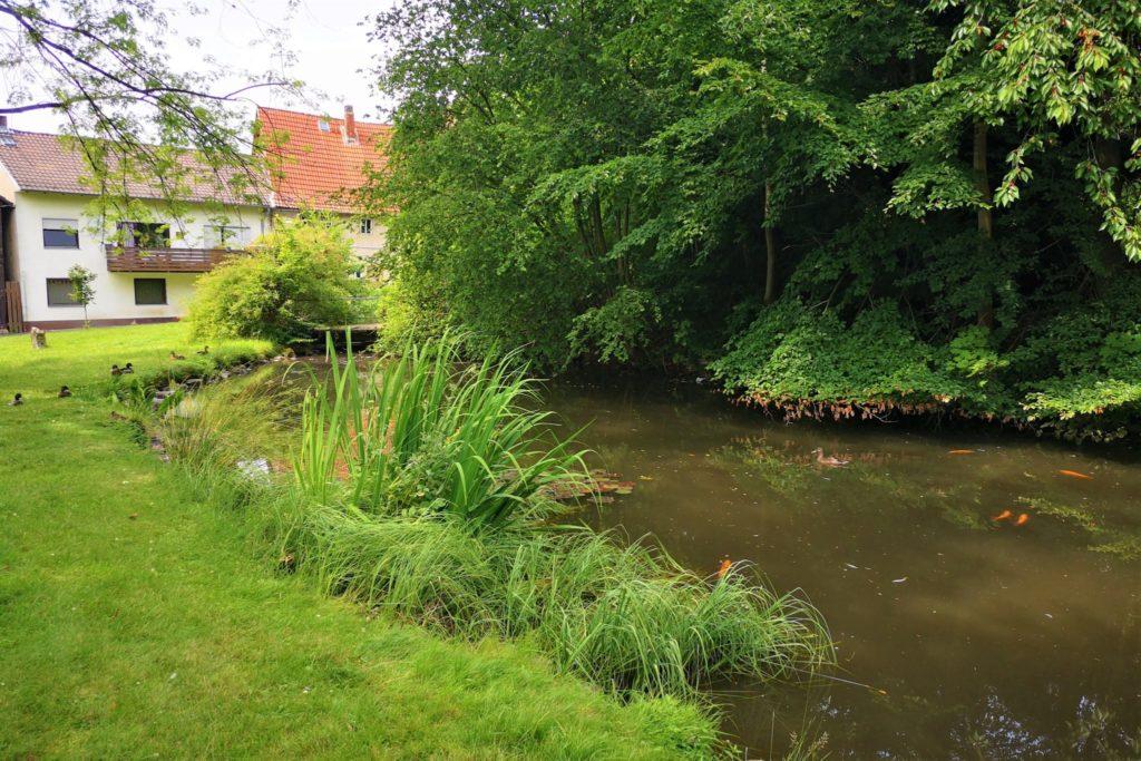 Alteburgpark Schotten