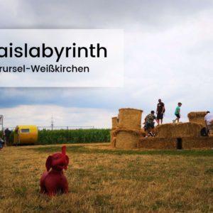 Maislabyrinth Oberursel-Weißkirchen