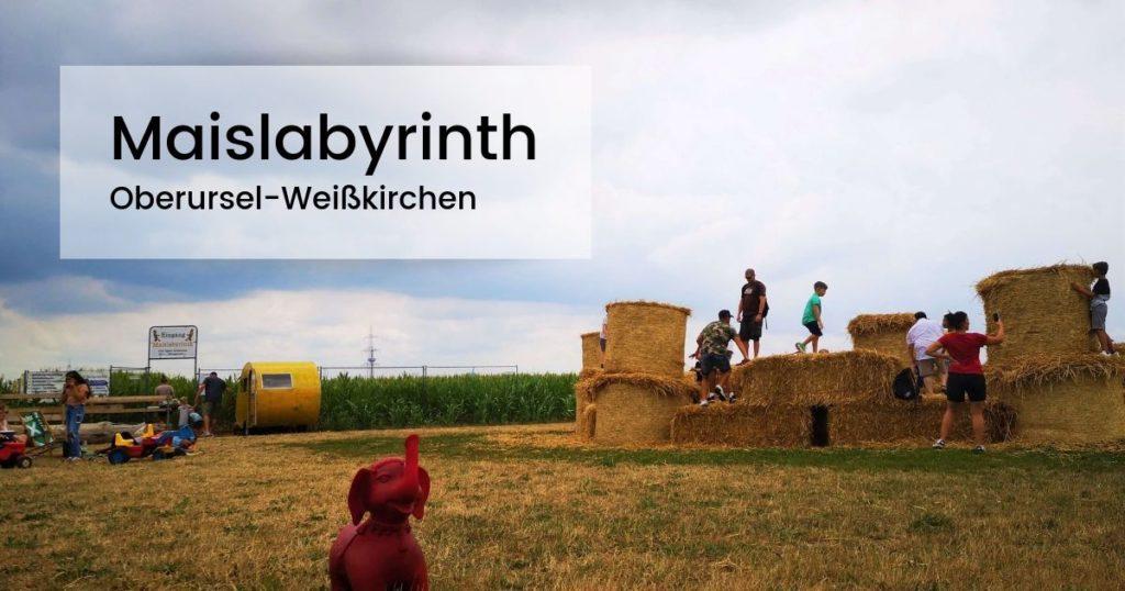 Maislabyrinth Oberursel-Weisskirchen