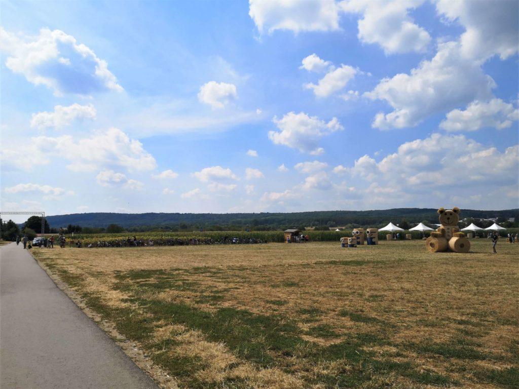 Übersicht Maislabyrinth Liederbach