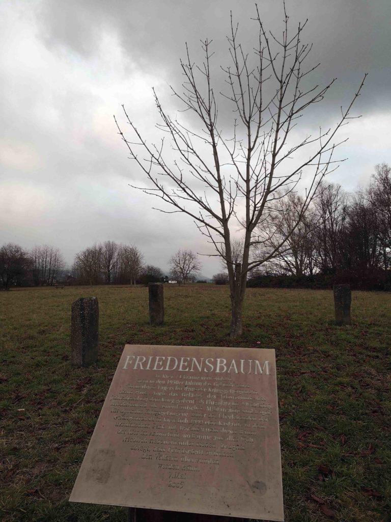Arboretum Friedensbaum