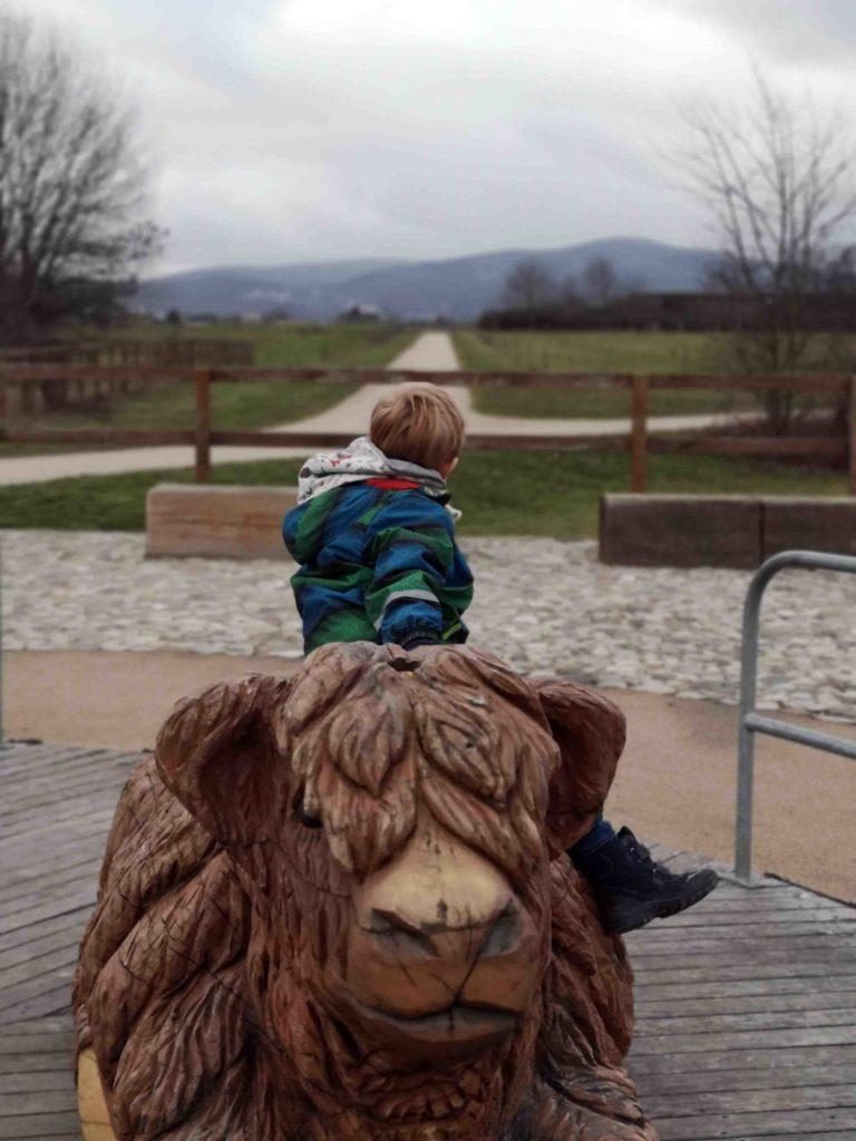 Arboretum Rinderkarussell