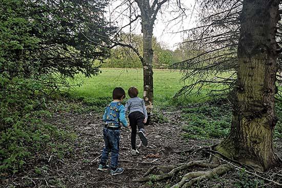 Kinder werfen Fichtenzapfen im Arboretum