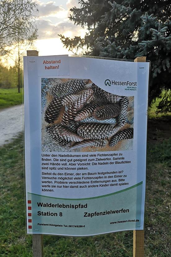 Arboretum Zapfenwerfen