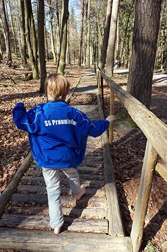Barfußpfad Wald Wildschweinroute Neu-Anspach