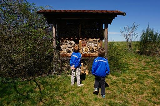 Bienenhotel Wildschweinroute