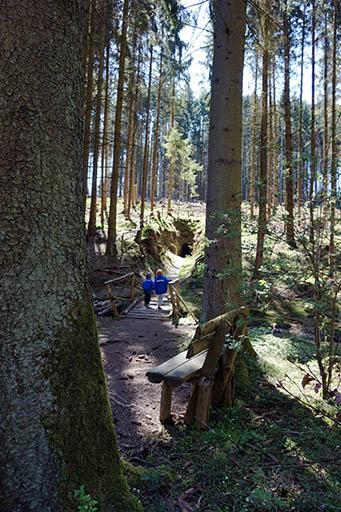 Fledermaushöhle Wald Wildschweinpfad Neu-Anspach