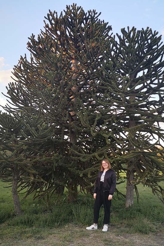 Arboretum Lieblingsbaum