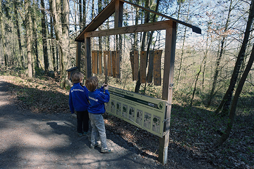 Kinder spielen Waldxylophon