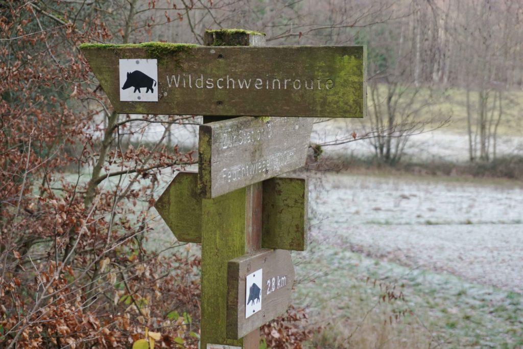 Wildschweinroute Hinweisschild