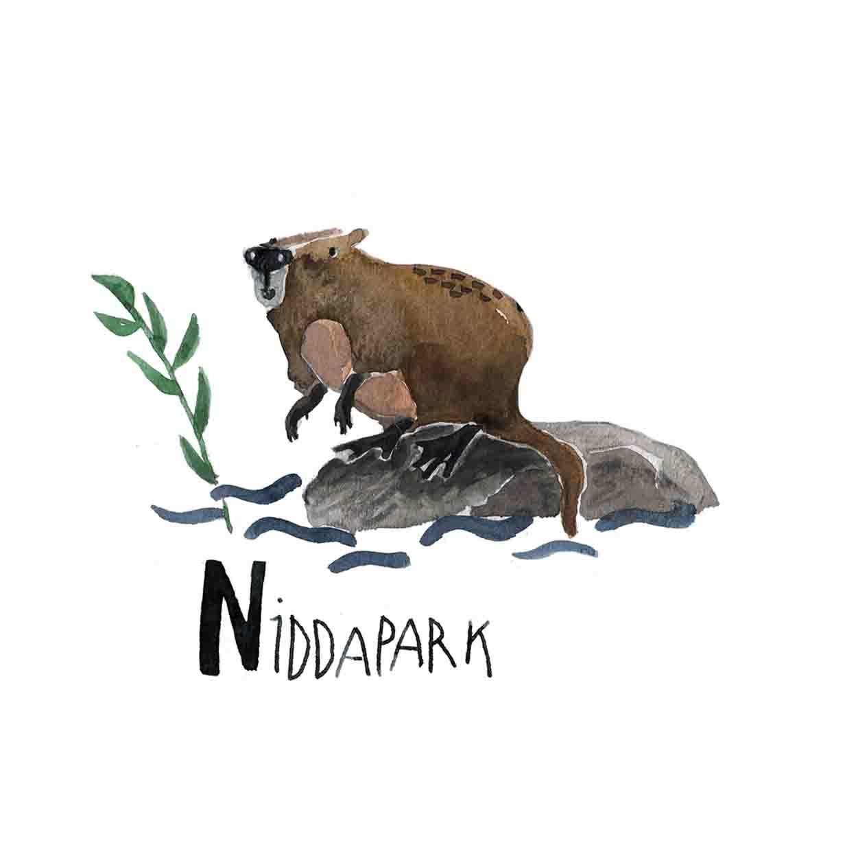 N Niddapark