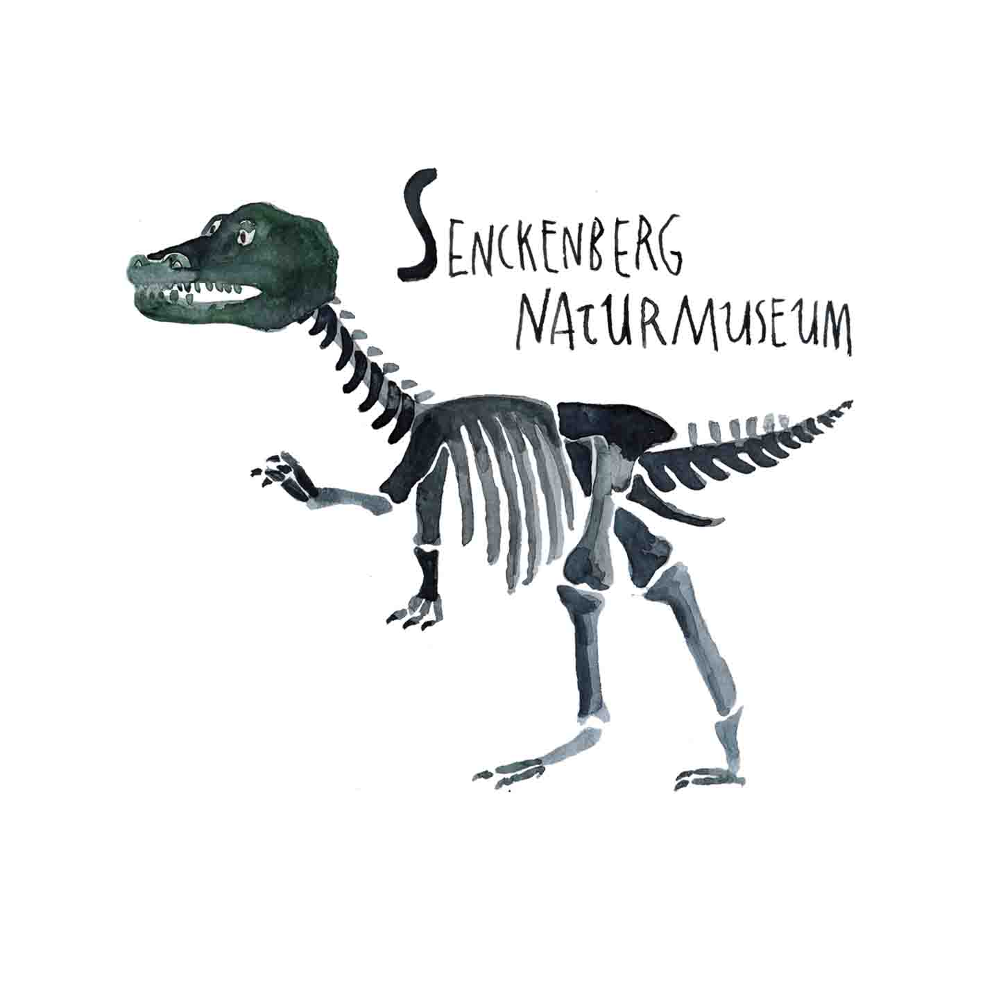 S Senckenberg Naturmuseum