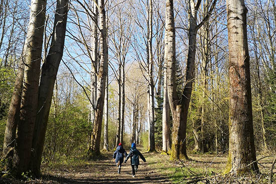 Kinder toben im Arboretum
