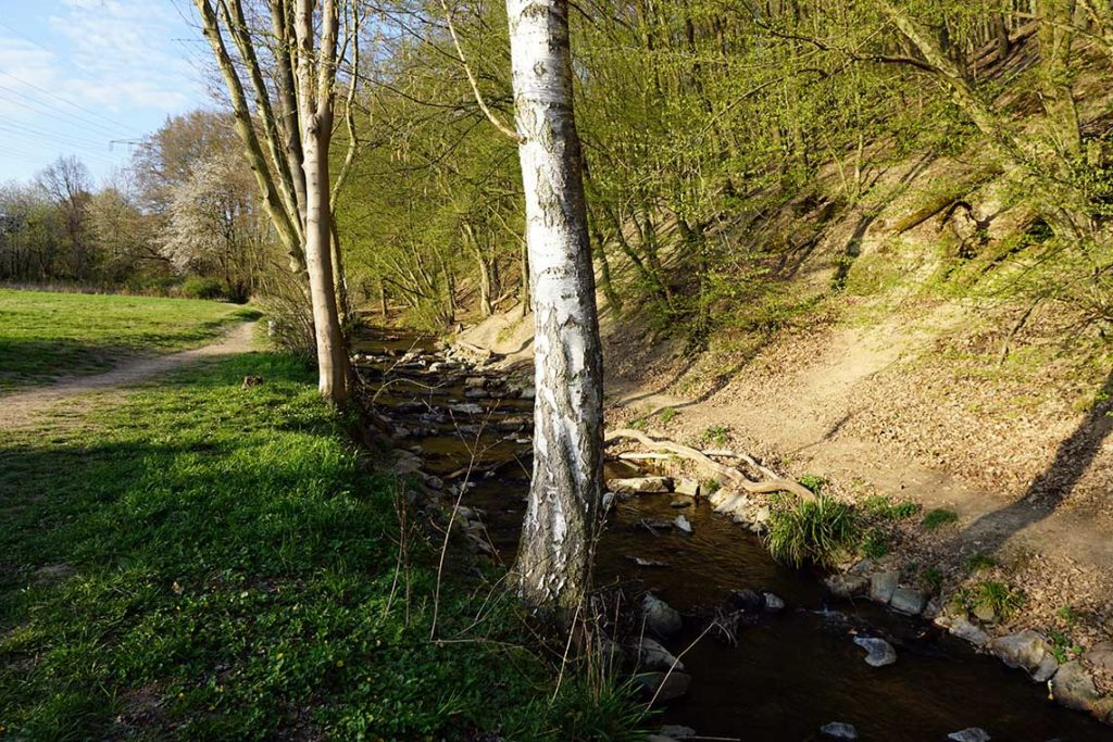 Liederbach Kelkheim