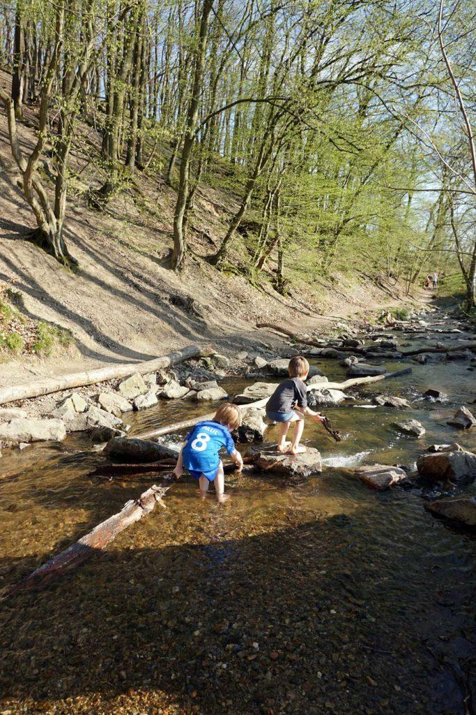 Ausflugstipp in die Natur: Für Wasserratten super!