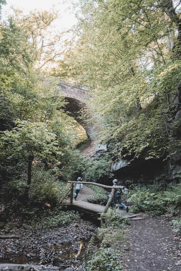 Brücke Seltenbachschlucht Klingenberg am Main