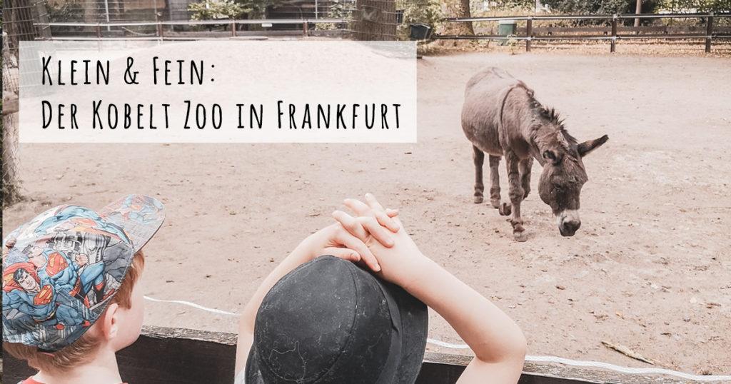 Klein und fein der Kobelt Zoo Frankfurt
