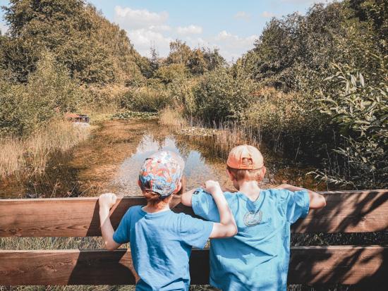 Teich im Natur-Erlebnis-Garten