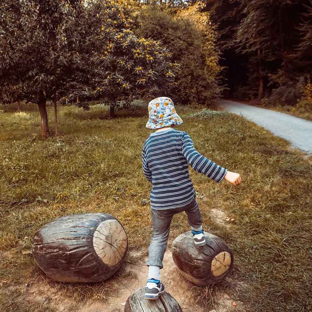 Herbst Kind auf Kastanien