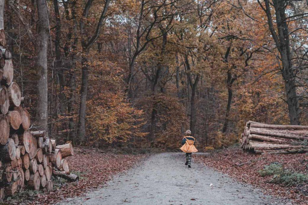 Kelkheim Waldspaziergang